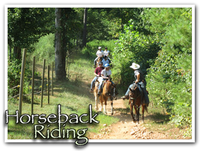 Blue Ridge Horseback Riding